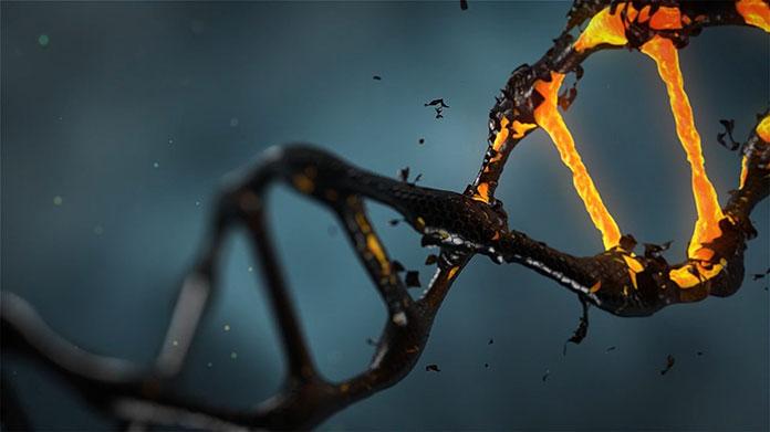 Które badania genetyczne w ciąży wykonać